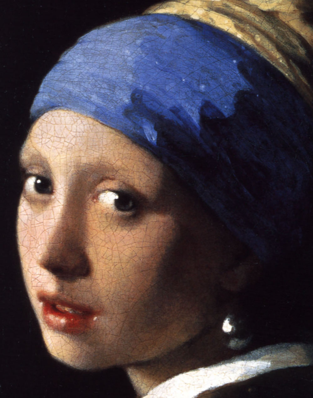 the girl with the pearl earring pdf