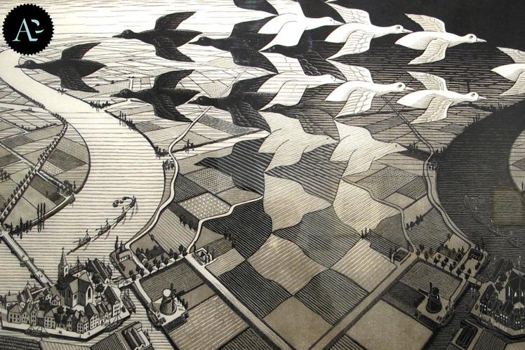 suddivisone del piano di Escher