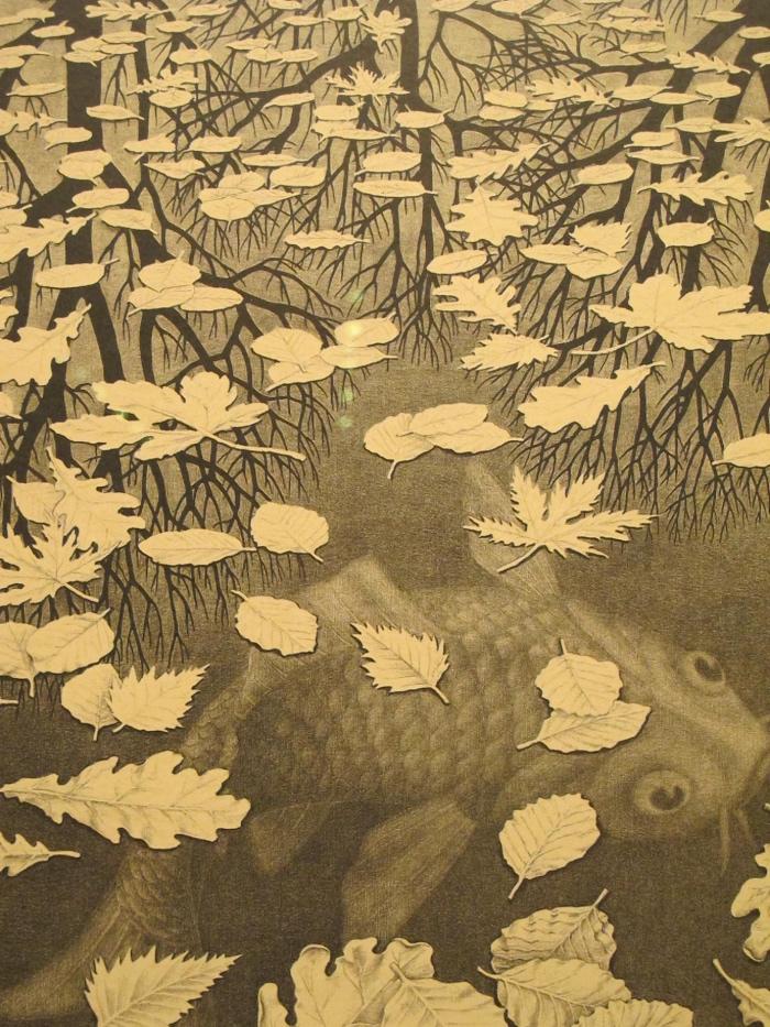 Litografia   Escher