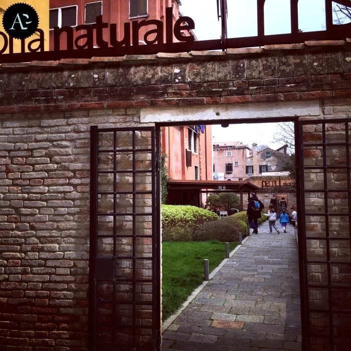 museo storia naturale di Venezia