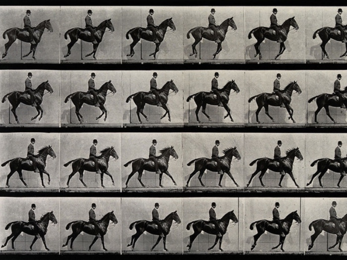 Edward Muybridge | a cantering_horse_and_rider_Eadweard_Muybridge_1887_m-2_Fotor