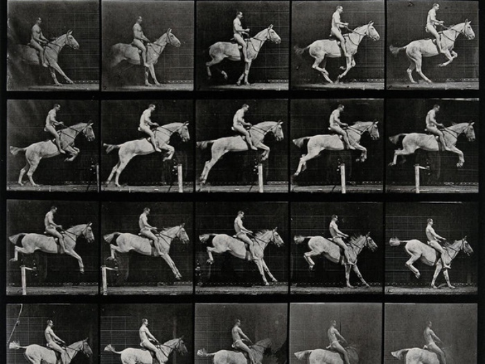 Edward Muybridge | cavallo che salta
