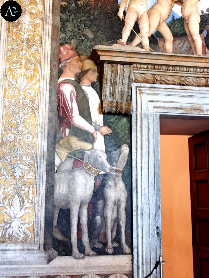 Bridal Chamber | Museums in Mantua