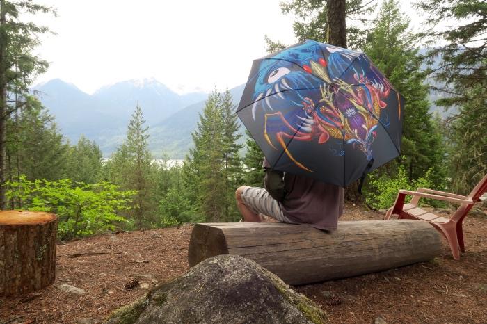 Pluvio Umbrella   Alex Pardee