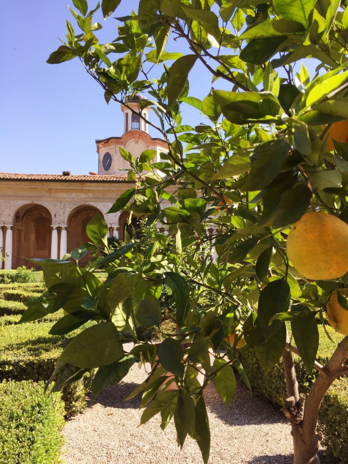 palazzo Ducale Mantova | giardino