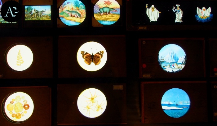 Museum of  Precinema | stained glass