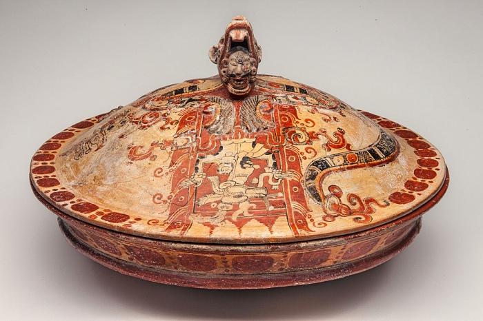 The Maya | exhibitions
