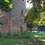 Torre Rovigo