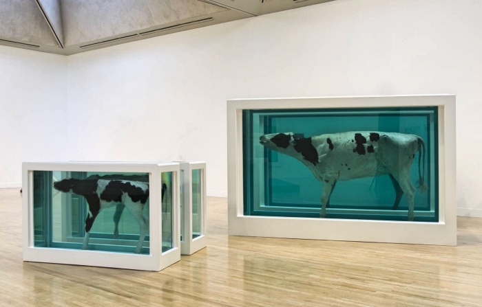 Damien Hirst | Mother and Child Divided