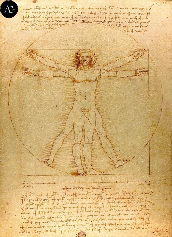 Vitruvian Man | Leonardo da Vinci