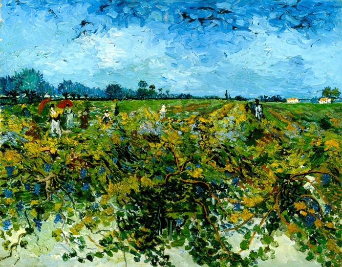 Vincent van Gogh | Vigneto