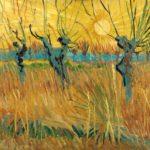 Vincent van Gogh | Salici potati al tramonto