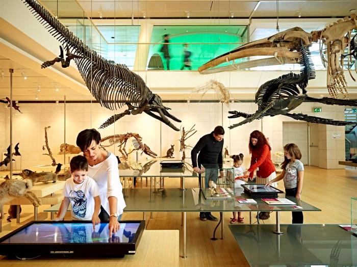 Museo | Trento