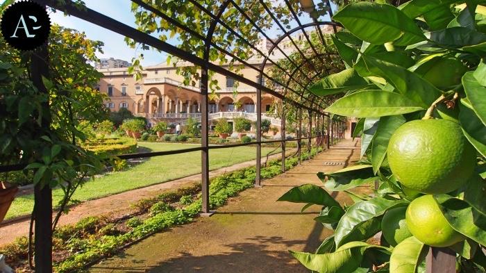 Villa del Principe | giardino