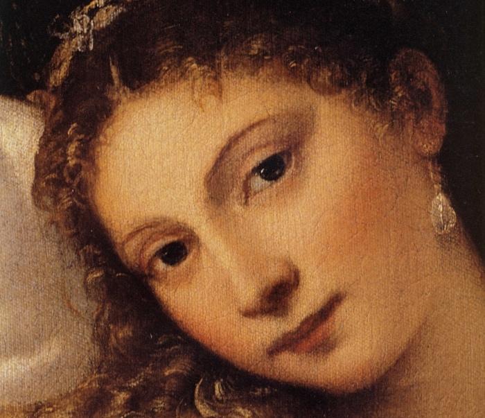 Venere Urbino | chi è