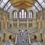 Museo di Storia Naturale | Musei Londra