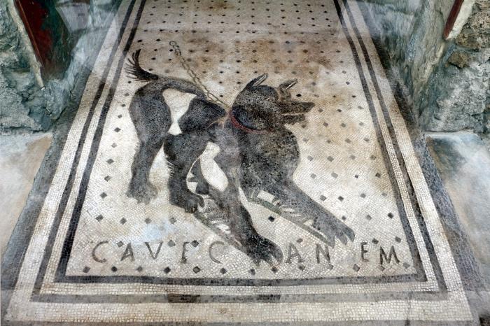 casa del Poeta Tragico | Cave Canem