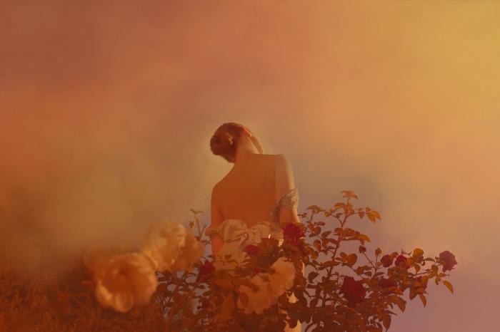 Anna Di Prospero | Le rose