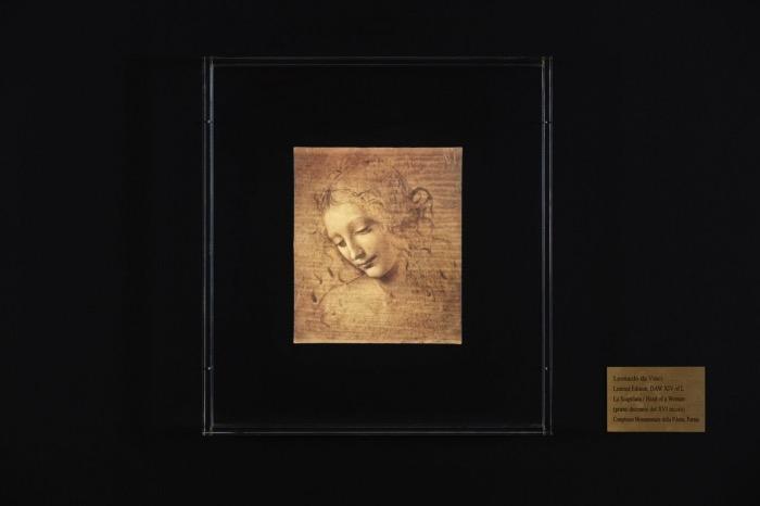 Scapiliata | Leonardo