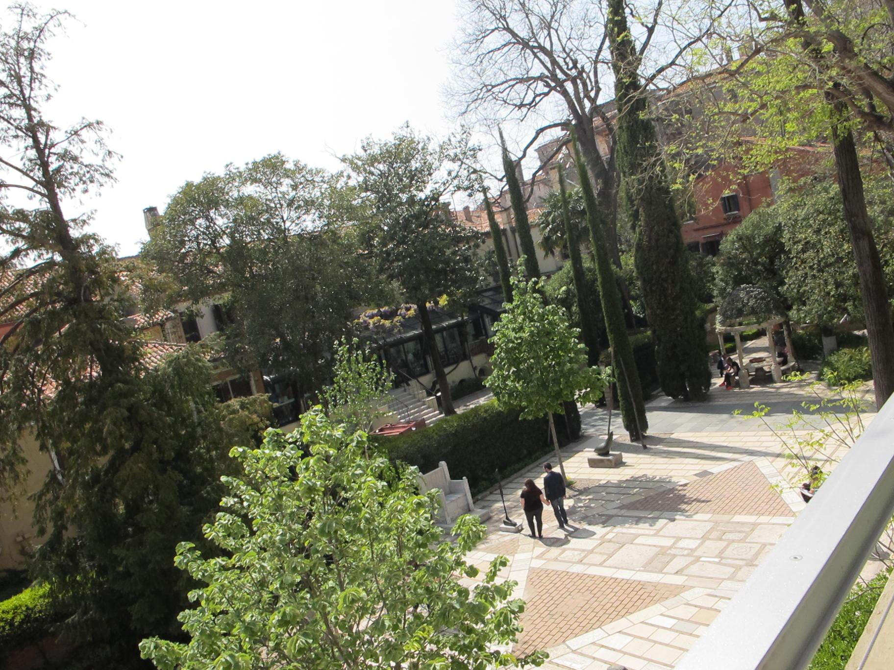 Guggenheim   musei venezia