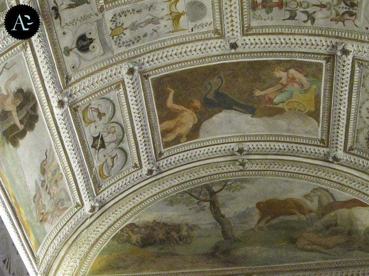Palazzo Chiericati 8