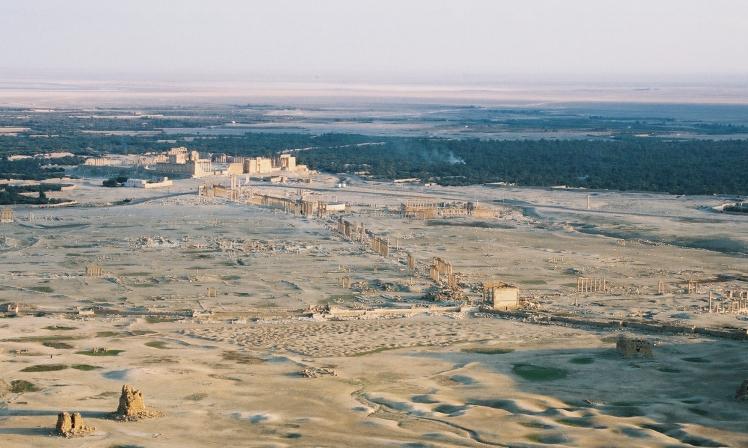 Palmira 5