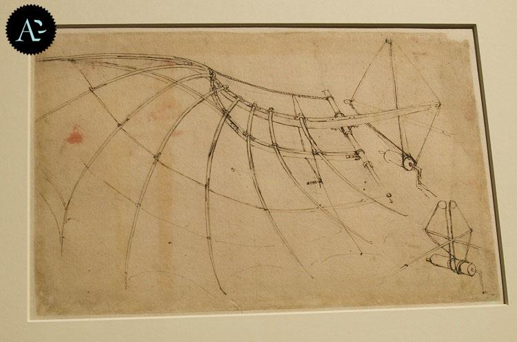 mostra Leonardo 3