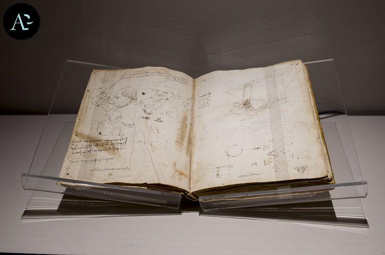 mostra Leonardo 5